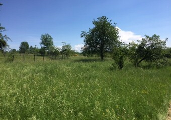 Sale Land 1 400m² Froideterre (70200) - photo