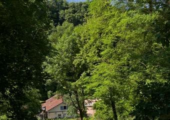 Vente Terrain 1 200m² Voiron (38500) - photo