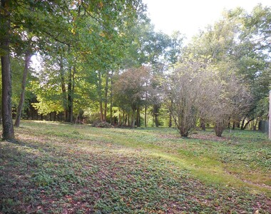 Vente Terrain Saint-Brisson-sur-Loire (45500) - photo