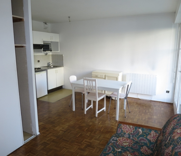 Location Appartement 1 pièce 23m² Grenoble (38100) - photo