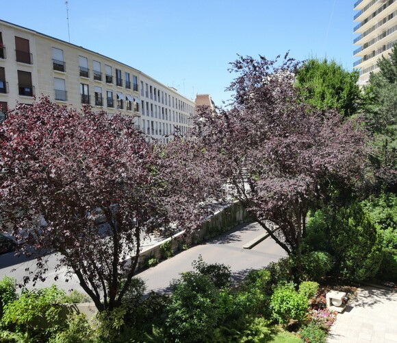 Location Appartement 2 pièces 50m² Paris 13 (75013) - photo
