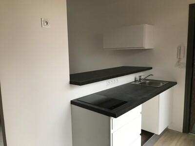 Location Appartement 3 pièces 35m² Saint-Étienne (42000) - Photo 5