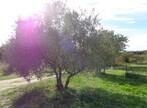 Vente Terrain Lauris (84360) - Photo 4