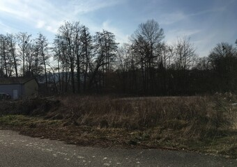 Vente Terrain 1 200m² Tagolsheim (68720) - photo
