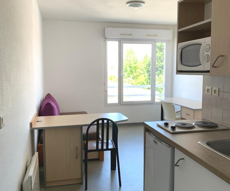 Location Appartement 1 pièce 18m² Pau (64000) - photo