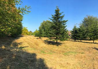 Sale Land Combeaufontaine (70120) - photo