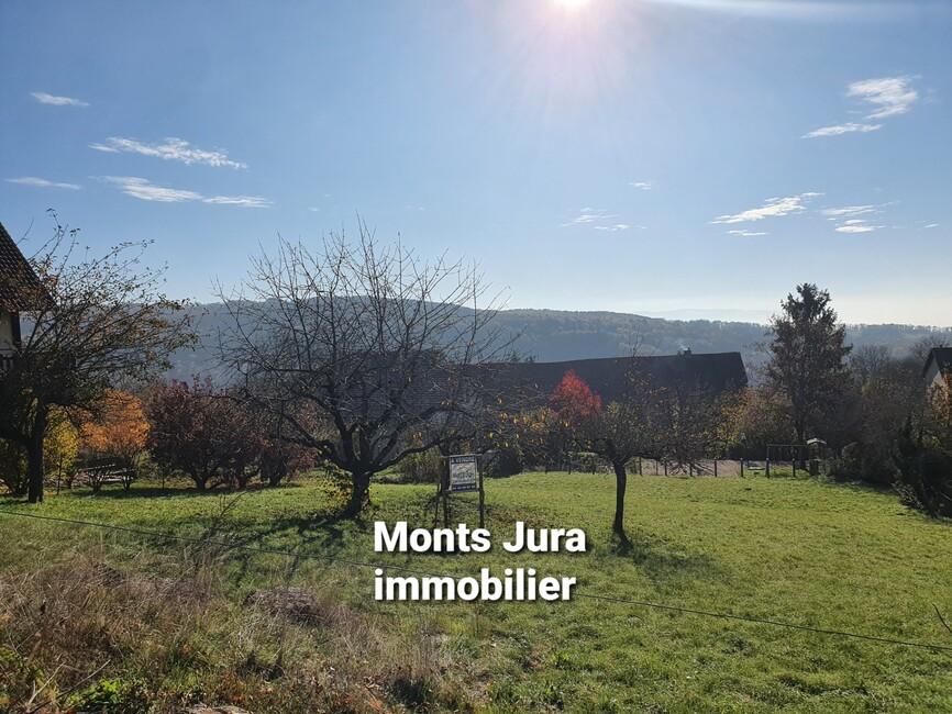 Ex 3 d'immobilier à louer / à acheter en Haut-Jura proposé par l'Agence