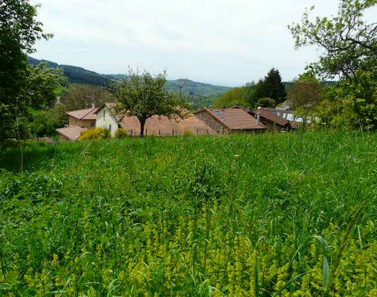 Vente Terrain 900m² Cours-la-Ville (69470) - photo