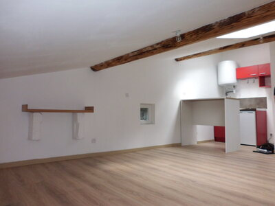 Location Appartement 1 pièce 14m² Saint-Étienne (42100) - Photo 1