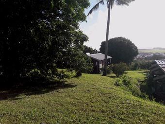 Vente Terrain 6 065m² Sainte-Suzanne (97441) - photo