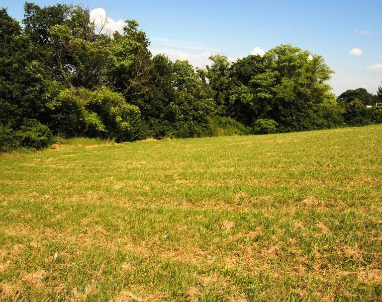 Vente Terrain 1 500m² SECTEUR SAMATAN-LOMBEZ - photo