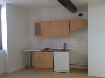 Location Appartement 2 pièces 49m² Saint-Étienne (42000) - photo