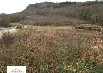 Vente Terrain 1 981m² Brégnier-Cordon (01300) - photo