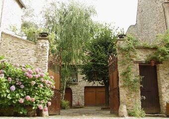 Vente Maison 700m² Rozay-en-Brie (77540) - Photo 1