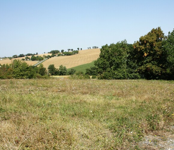 Vente Terrain 2 036m² SECTEUR SAMATAN-LOMBEZ - photo