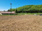 Vente Terrain 1 595m² Champier (38260) - Photo 3