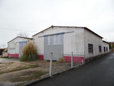 Vente Local industriel 4 pièces 507m² Pont-l'Abbé-d'Arnoult (17250) - photo