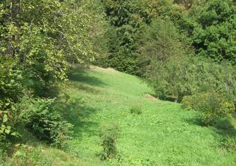 Vente Terrain 2 040m² Onnion (74490) - photo