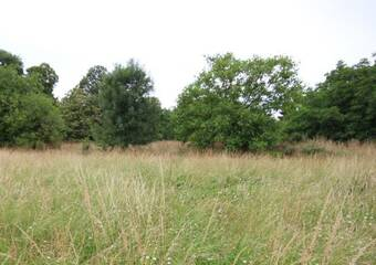 Sale Land 705m² Legé (44650) - photo