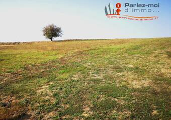 Vente Terrain 1 000m² Sainte-Anne-sur-Gervonde (38440) - photo