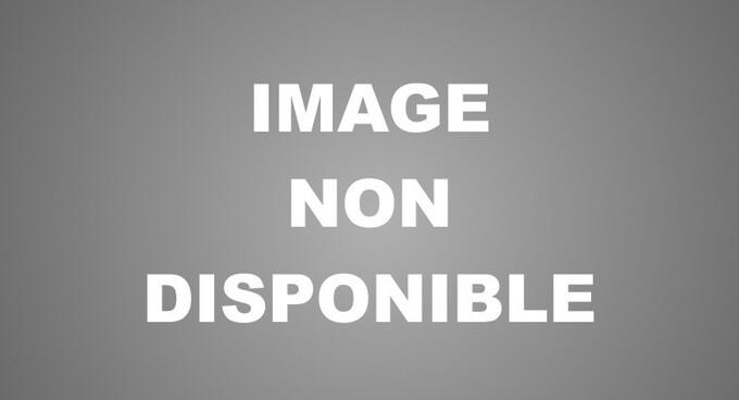 Vente Appartement Neuf Orry La Ville