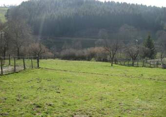 Vente Terrain 769m² Saint-Just-Malmont (43240) - Photo 1