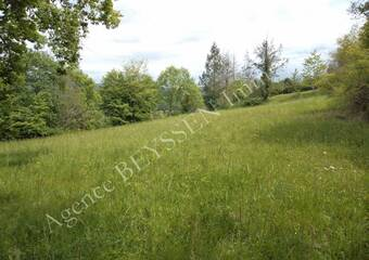 Vente Terrain 2 920m² La Chapelle-aux-Brocs (19360) - photo