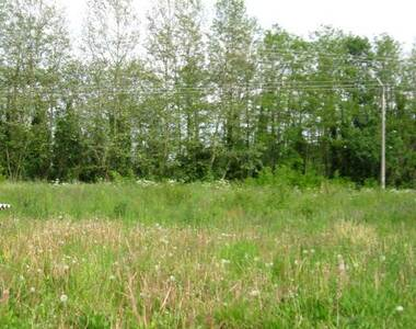 Vente Terrain 3 700m² Belleville (69220) - photo