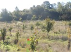 Sale Land 20 000m² Bréxent-Énocq (62170) - Photo 7