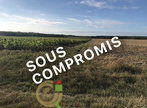 Vente Terrain 1m² Beaurainville (62990) - Photo 2