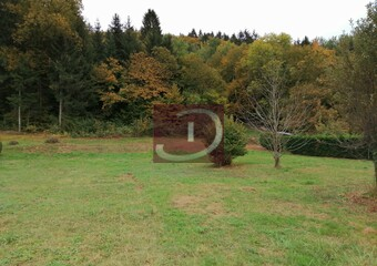 Vente Terrain 1 000m² Draillant (74550) - Photo 1