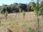 Sale Land 20 000m² Bréxent-Énocq (62170) - Photo 6