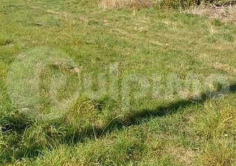 Vente Terrain 486m² Beaumetz-lès-Loges (62123) - Photo 1