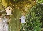 Vente Maison 6 pièces 160m² Labenne (40530) - Photo 25