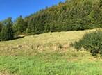 Vente Terrain 1 610m² Bellevaux (74470) - Photo 2