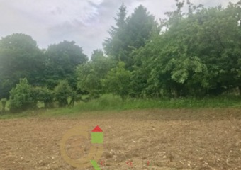 Vente Terrain 800m² Beaurainville (62990) - photo