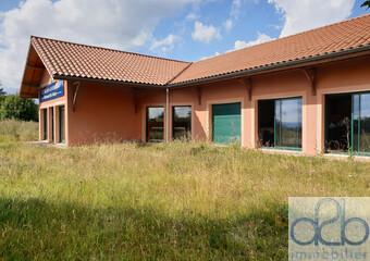 Vente Immeuble 2 pièces 220m² Pradelles (43420)