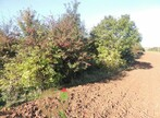 Sale Land 20 000m² Bréxent-Énocq (62170) - Photo 4