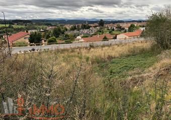 Vente Terrain 1 560m² Saint-Didier-en-Velay (43140) - Photo 1