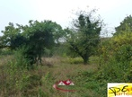 Sale Land 1 880m² Houdan (78550) - Photo 1