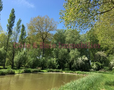 Vente Terrain 7 070m² Saigneville (80230) - photo