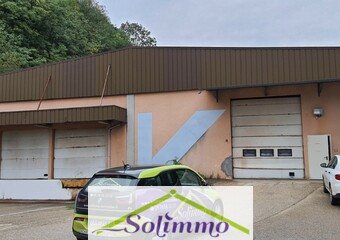 Vente Local industriel Saint-Genix-sur-Guiers (73240) - Photo 1