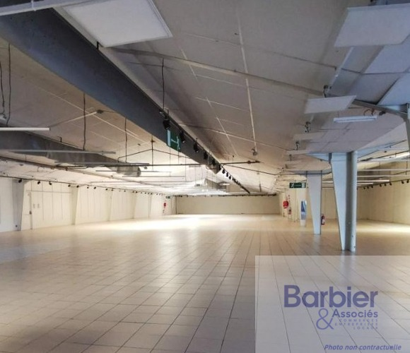 Location Local commercial 1 500m² Vannes (56000) - photo